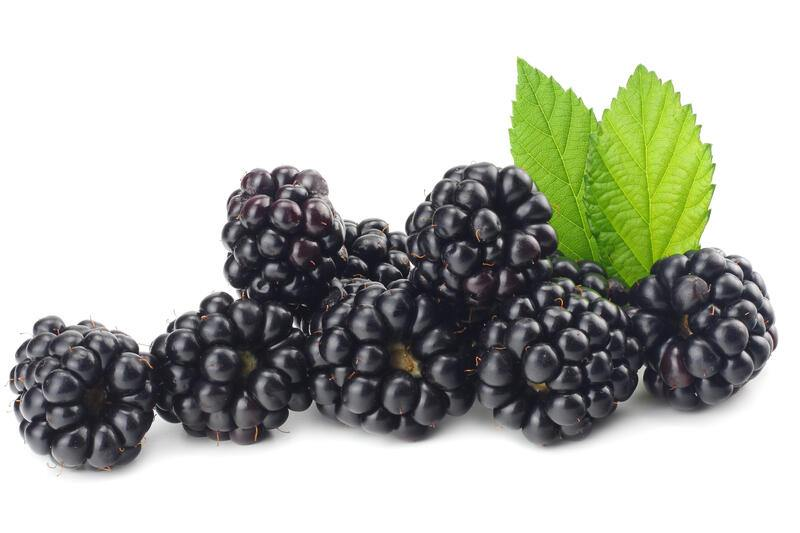 blackberries with green leaf isolated on white background. macro