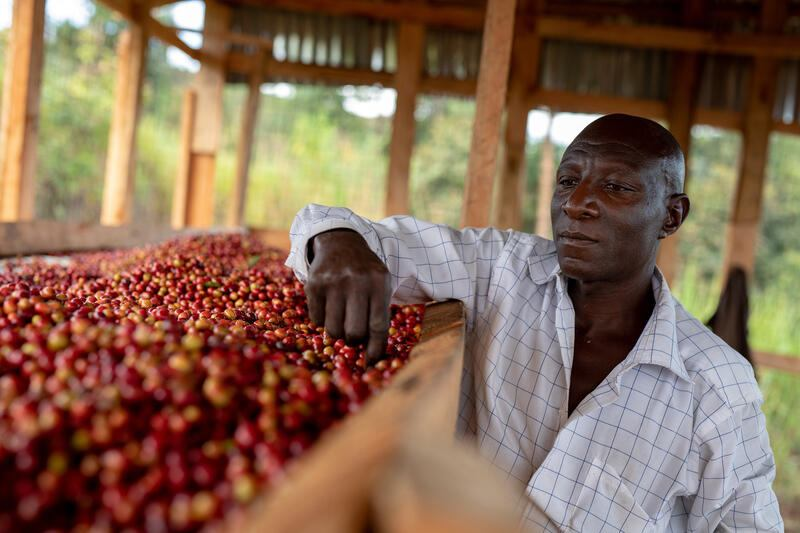 Nespresso Reviving Origins Uganda