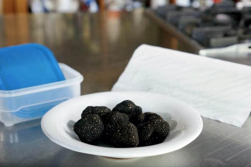 How to Globus: comment conserver des truffes